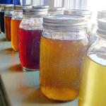 herbal tonic teas