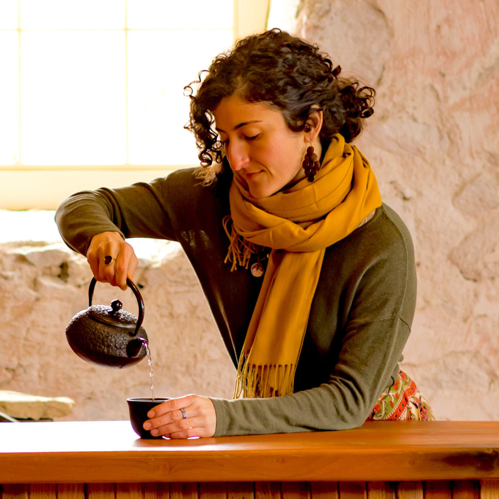 local herb shop, local herbal tea, local herbalism