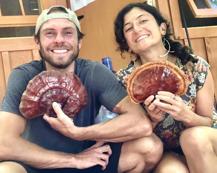 Carissa and Adam of Town Farm Tonics