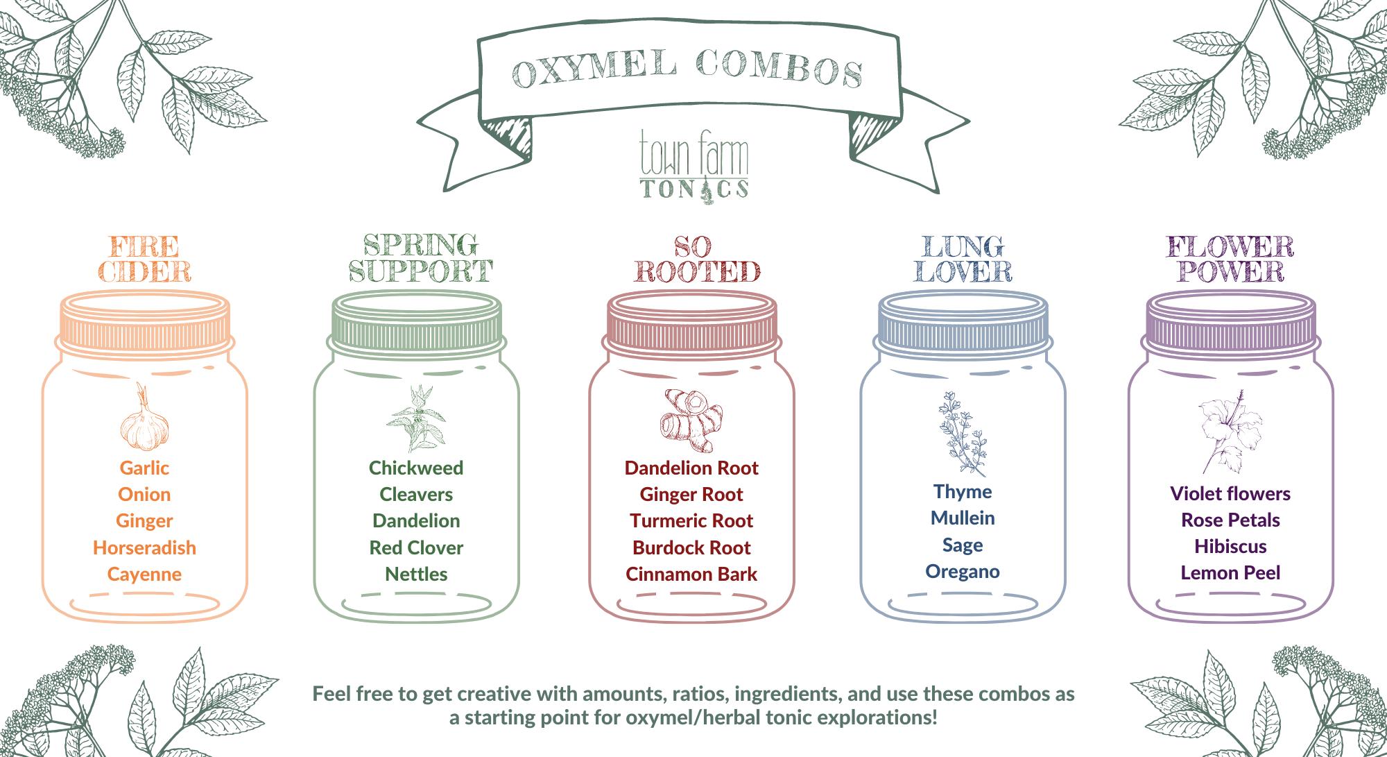fire cider oxymel, elderberry oxymel, onion oxymel, rose oxymel, dandelion oxymel, nettle oxymel