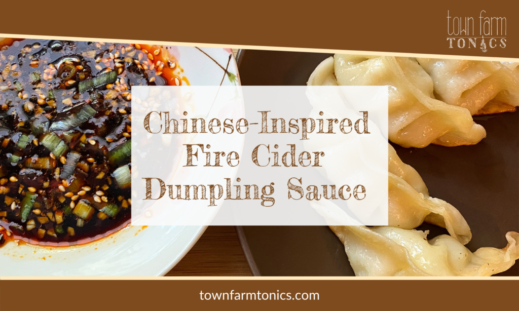 Chinese-inspired Fire Cider Dumpling Sauce Reciple