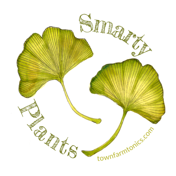 smarty plants herbal pun sticker for laptop, water bottle or car